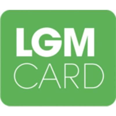 Spolupráca s LGM CARD. Naprogramovanie API pre bezpečnú komunikáciu s microSD kartou.